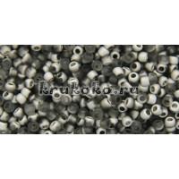 Бисер Cotobe 11/0 Grey and Silver Mat (CTBJ052)