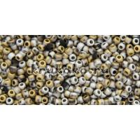 Бисер Cotobe 11/0 Матовый золото и серебро (CTBJ086)